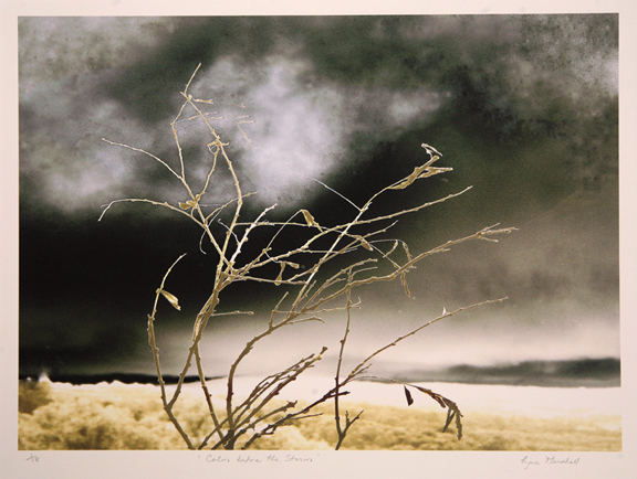 Lyne Marshall's original limited edition pigment prints